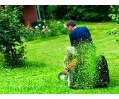 Требуются люди для садовых работ