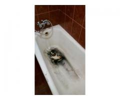 Реставрация ванн,поддонов.Гарантия качество