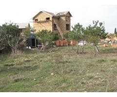 Продам дом на большом участке с соснами
