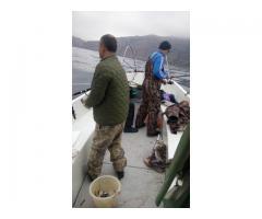 Рыбалка в Балаклаве
