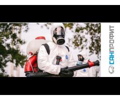 Профессиональная дезинфекция дезинсекция  против тараканов блох бытовых насекомых в Севастополе