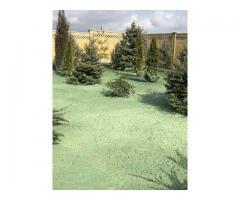 Гидропосев газонов и озеленение